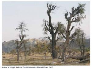 Hingoi National Park