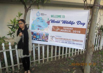 Miss Minahil Safwan - WWF Day-4